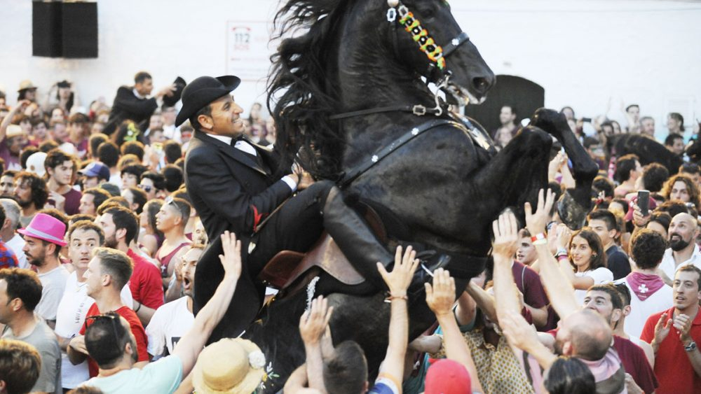 134 caballos.