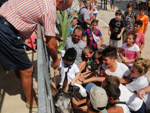 """(Galería de fotos) Paellas y """"jaleo d'ases"""" para despedir las fiestas de Sant Lluís"""