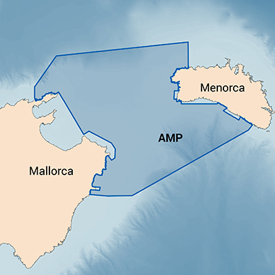 Delimitación del Área Marina Protegida del Canal de Menorca (Imagen: SOCIB)