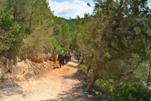 Imagen del Camí de Cavalls cerca de Cala Mitjana
