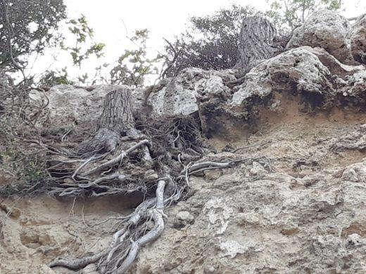 (Fotos) Sin peligro para el Fonduco