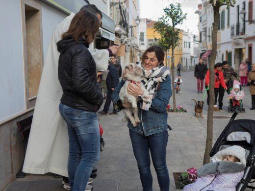 (Fotos) Bendición de animales en Es Mercadal