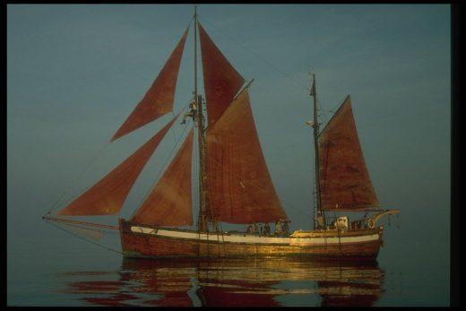 El velero Toftevaag (Foto: Ayuntamiento Maó)