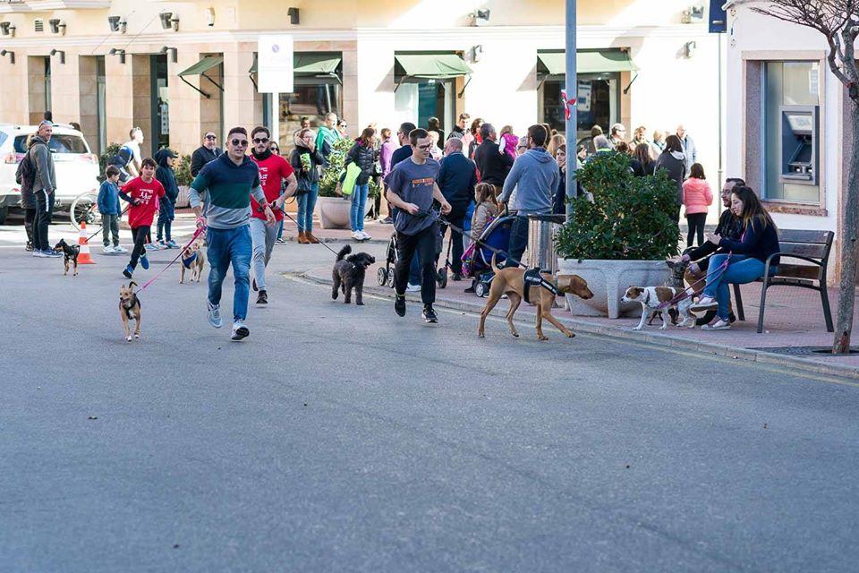 Actividad con perros realizada el pasado mes de diciembre en Menorca