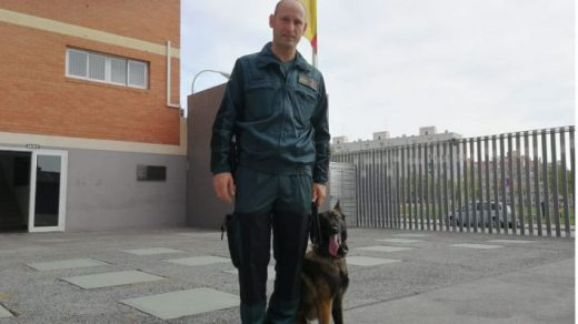 Miguel Ángel Homar, miembro del servicio cinológico de la Guardia Civil de Baleares.