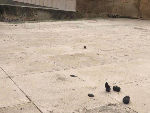 (Fotos) El Museu de Menorca explota contra el incivismo