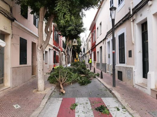 Los operarios municipales ya han comenzado a trabajar en el Camí des Castell