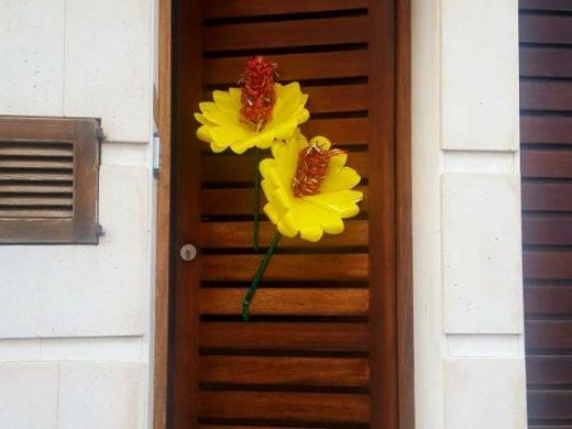 (Galería de fotos) Flores y alegría contra el coronavirus