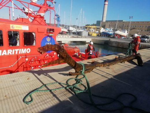 Uno de los troncos, en el puerto de Maó (Foto: Salvamento Marítimo)