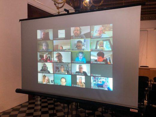 Imagen de la reunión telemática celebrada este viernes