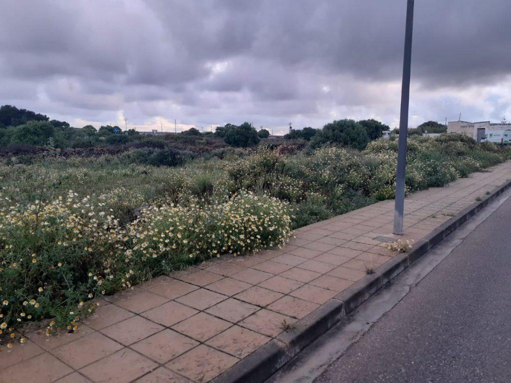 Imagen de la parcela de Santa Rita donde se ubicarán los nuevos Juzgados