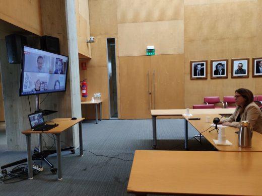 Imagen de la reunión telemática de alcaldes