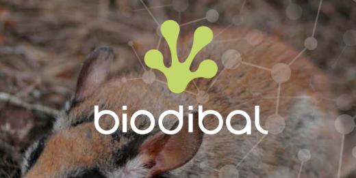 Biodibal, un proyecto de la Universidad de las Illes Balears