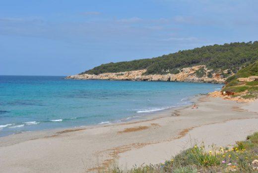 Playa de Binigaus (Foto: EA)