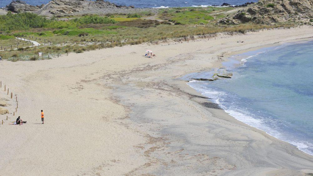 Playa de Sa Mesquida esta mañana