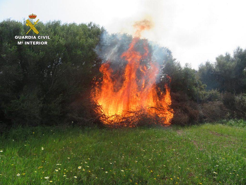 Una imagen del incendio (Fotos: Guardia Civil)