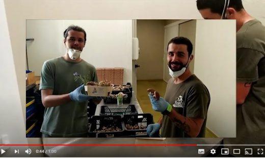 Imagen del vídeo de agradecimiento de los productores locales