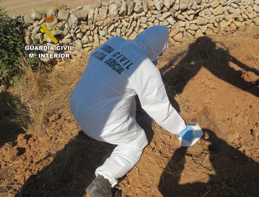 Agentes del Seprona en la investigación (Foto: Guardia Civil)