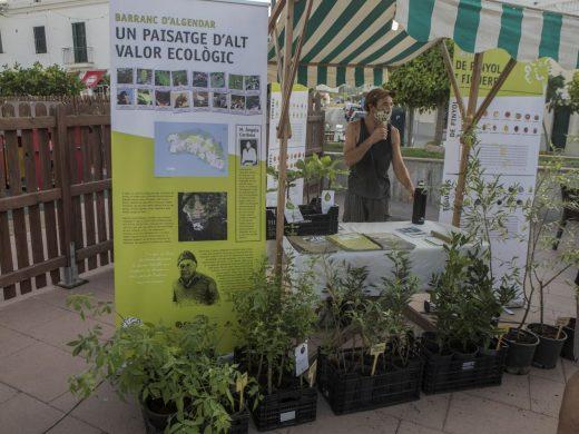 (Fotos) Es Mercadal se convierte en el centro de los productos ecológicos