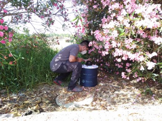 Realizando tareas de control de los mosquitos (Imagen: UIB)