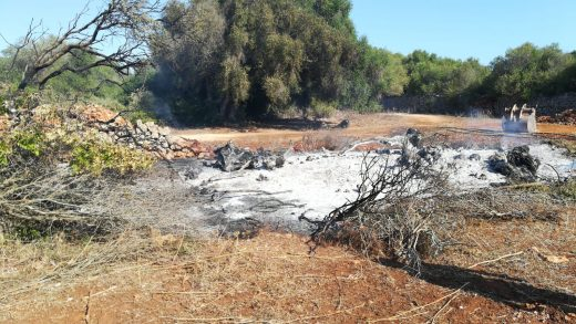 Zona en la que se ha declarado el incendio (Foto: Ibanat)