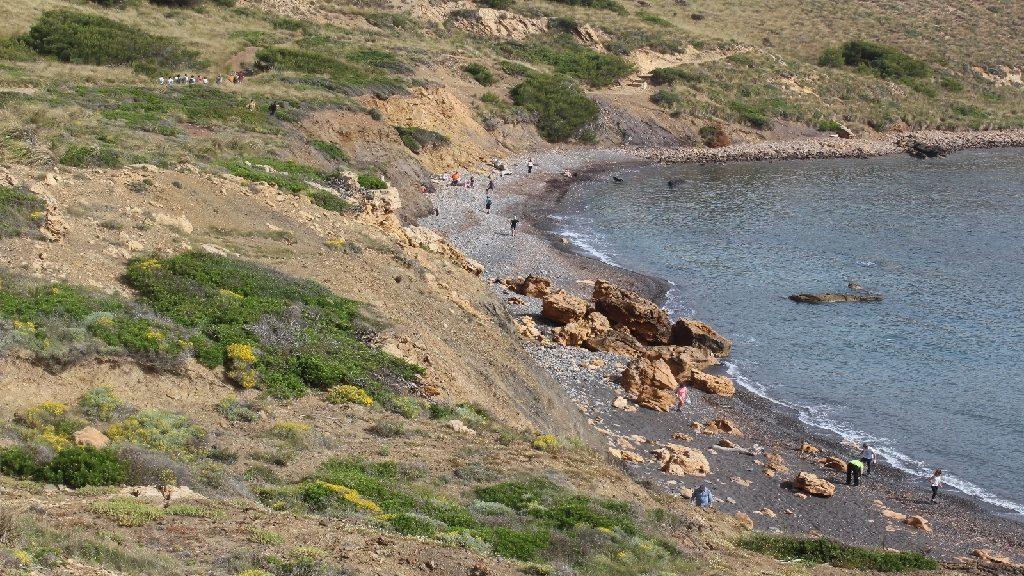 Actuación en una playa de la Isla (Foto: GOB Menorca)