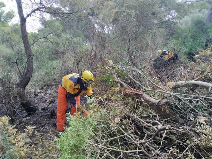 Bomberos actuando en la zona afectada (Foto: Ibanat)