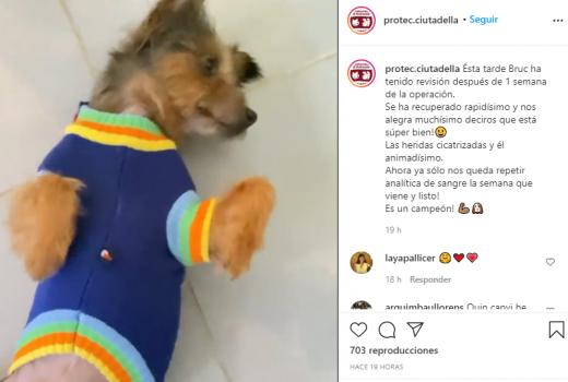 Captura de pantalla del post en Instagram.
