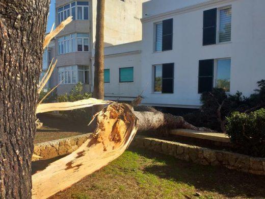 (Fotos) Huracán de incidentes