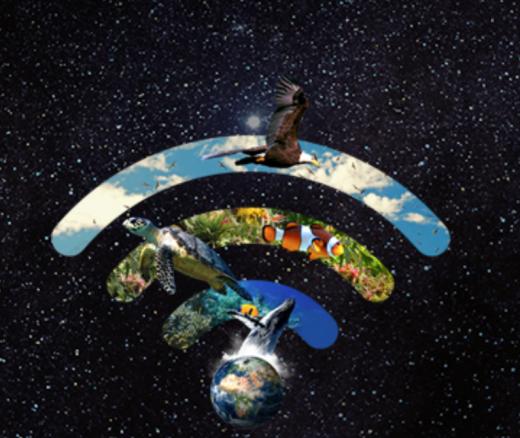 Este año WWF centra su mensaje en la protección de la naturaleza