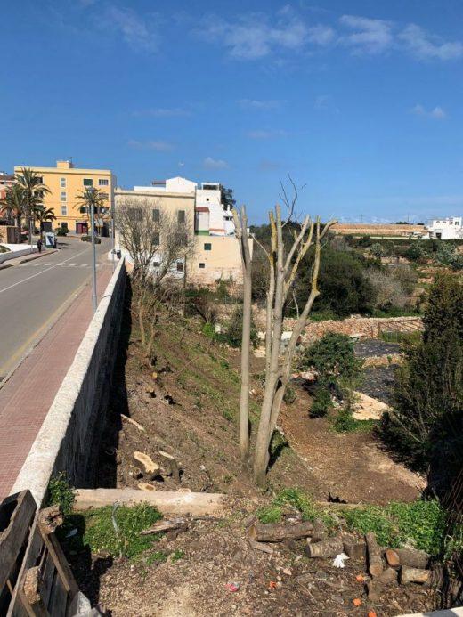 Nueva imagen del canal dels Horts