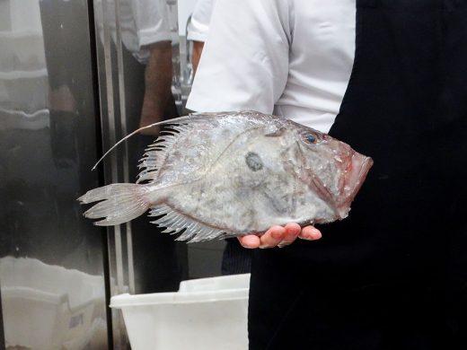 (Fotos) Culto al pescado de Menorca