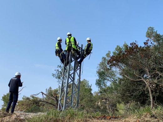 Operarios de Endesa trabajando en la red eléctrica