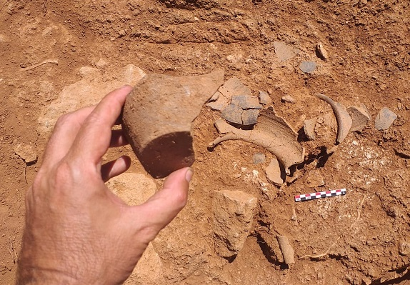 Muestra de uno de los hallazgos (Fotos: Fernando Prado)