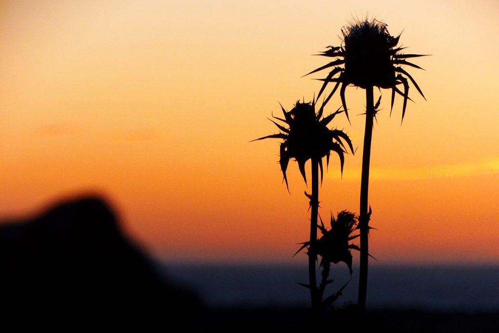 Puesta de sol en Ciutadella (Foto: Cris Ruiz)
