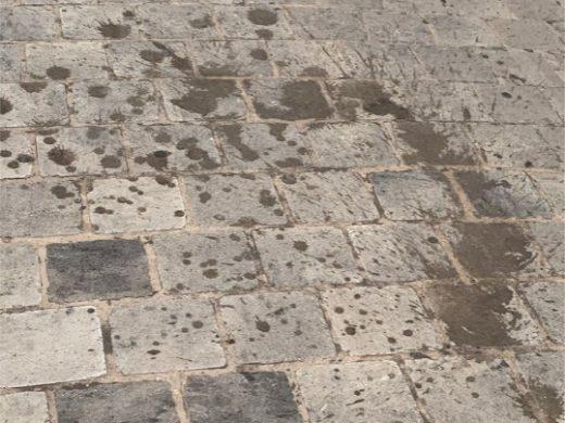 """""""Ciutadella está sucia y descuidada"""", el PP pide mayor control del servicio de limpieza"""