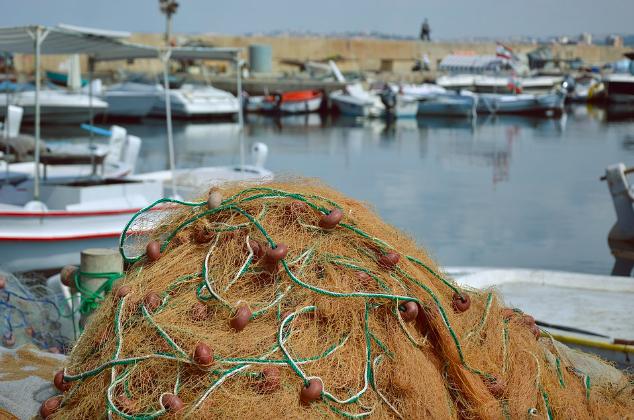 Turismo, pesca o náutica recreativa